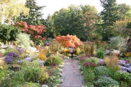 mental garden visits