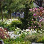 Auch der Vorgarten kann schön sein! © Isabelle van Groeningen