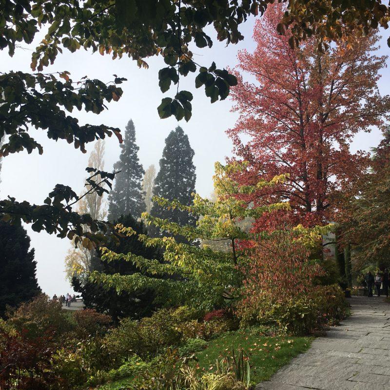 Autumn Colour Isle of Mainau © Isabelle van Groeningen