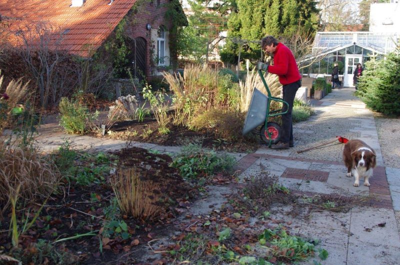 Compost mulch on borders © Isabelle van Groeningen