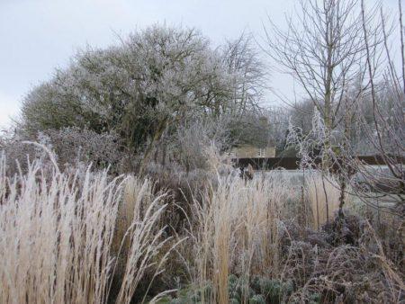 Frosty landscape © Isabelle van Groeningen