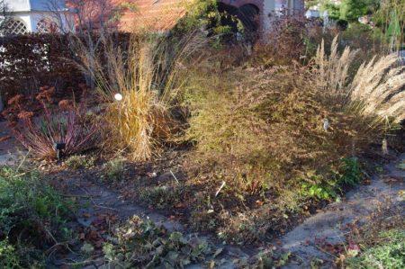 Erste Aufräumaktion - so geht Gärtnern © Isabelle van Groeningen