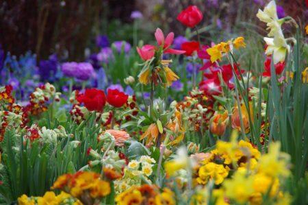 Frühlingshaus - warm © Isabelle van Groeningen