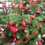 Weihnachtsbaum in der Königlichen Gartenakademie © Isabelle van Groeningen