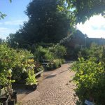 Königliche Gartenakademie Anlage © Isabelle van Groeningen