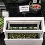 Chatsworth Flower Show 2019 - Robinson Gemüse Saatgut © Isabelle van Groeningen