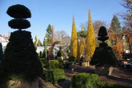 Immergrüner Garten - Gartenakademie © Isabelle van Groeningen