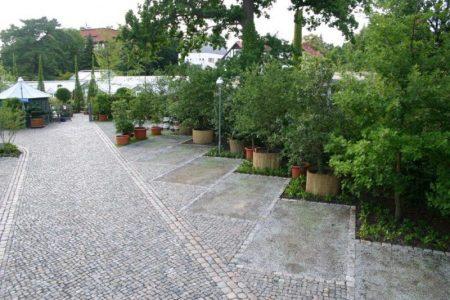 Park Platz der Gartenakademie nach eröffnung: wertvolle Bäume und Sträucher erhalten © Isabelle van Groeningen