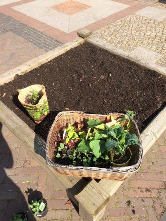 3. Hochbeet fertig zum Pflanzen © Isabelle van Groeningen