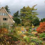 Foerster Garten © Isabelle van Groeningen