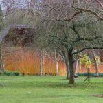 Hillier Arboretum © Isabelle van Groeningen