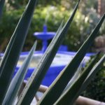 Jardin Majorelle Kobalt blau © Isabelle van Groeningen