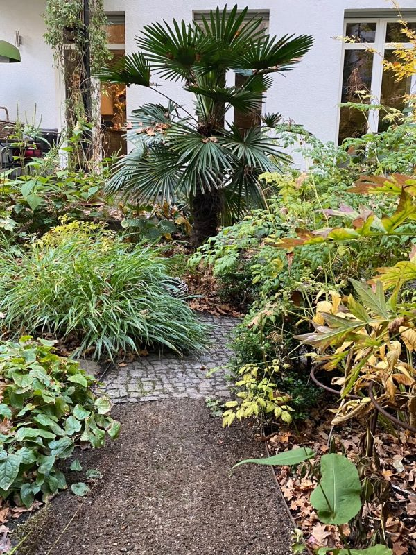 Eine klare Struktur hilft den Garten durch diese unordentliche Jahreszeit © Isabelle Van Groeningen