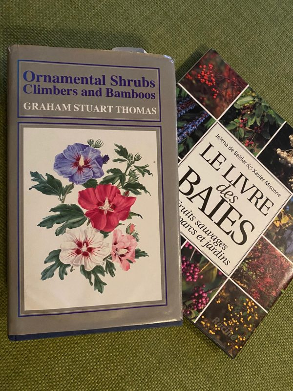 Mehr Lieblingsbücher zur Garten-Planung © Isabelle Van Groeningen